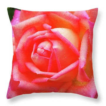 Dewy Rose Throw Pillow
