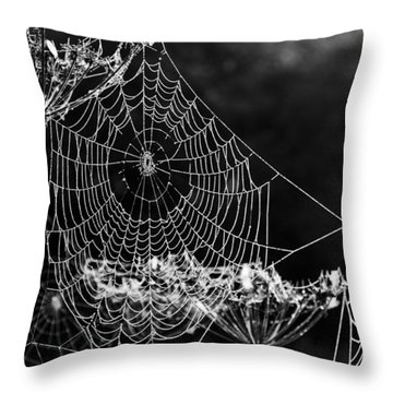 Throw Pillow featuring the photograph Dewy Spider's Web by David Isaacson