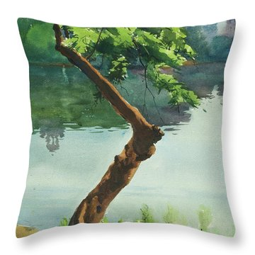 Dhanmondi Lake 03 Throw Pillow