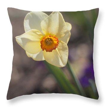 Diagonal Daffy Throw Pillow