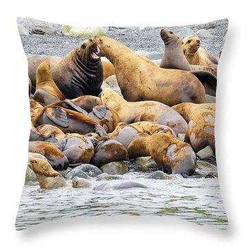 Disagreement Throw Pillow
