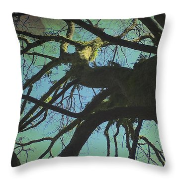 Throw Pillow featuring the photograph Dialogue  by Connie Handscomb
