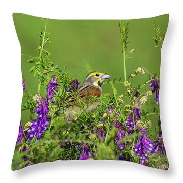 Dickcissel - 8256 Throw Pillow