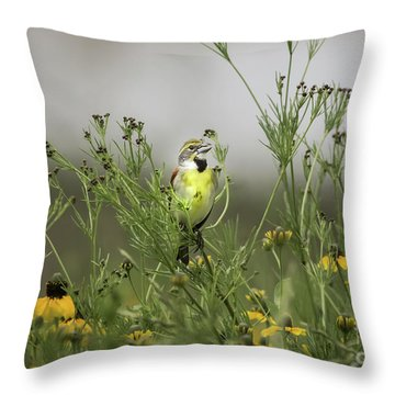 Dickcissel With Mexican Hat Throw Pillow by Robert Frederick