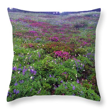 Dickerman Floral Meadow Throw Pillow