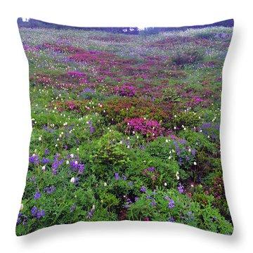 Dickerman Floral Meadow Throw Pillow