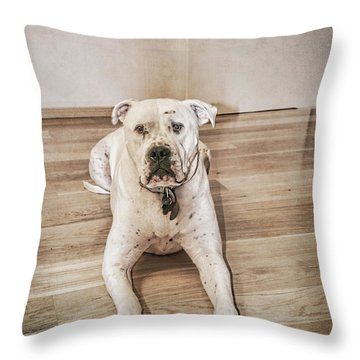 Did I Do Something Wrong? Throw Pillow