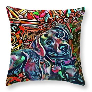 Did Somebody Say Treat? Blue Lacy Dog Throw Pillow