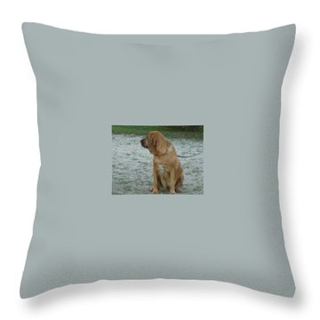 Did You Hear That? Throw Pillow by Val Oconnor