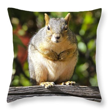Did You Take My Nuts Throw Pillow by James Steele