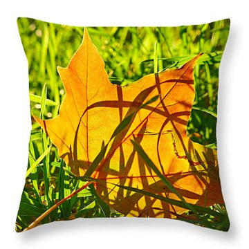 Different Level Throw Pillow