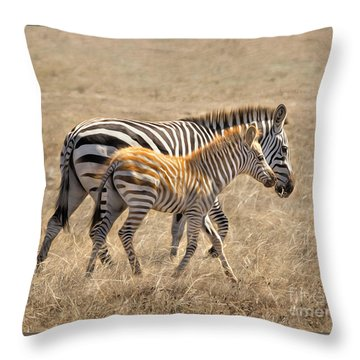 Different Stripes Throw Pillow by Alice Cahill