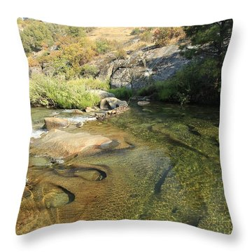 Throw Pillow featuring the photograph Dimensions by Sean Sarsfield