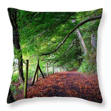 Dinefwr Park 1 Throw Pillow