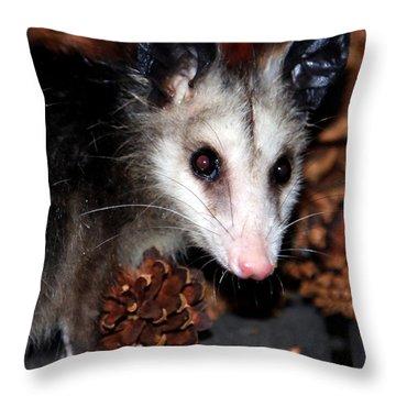 Dining Possums Vi Throw Pillow