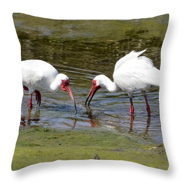 Dinner For Two Throw Pillow by Dan Williams