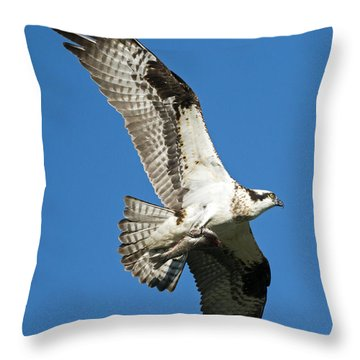 Dinner To Go Throw Pillow