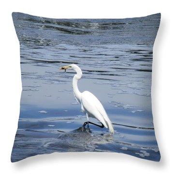 Dinnertime Pelican Throw Pillow