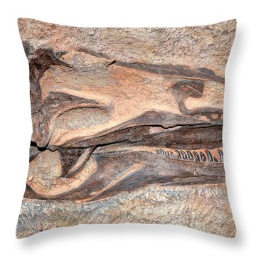 Dinosaur Skull And Teeth In Rock - Utah Throw Pillow by Gary Whitton