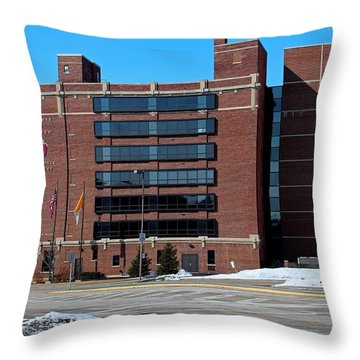Diocese Of Toledo In Winter Throw Pillow by Michiale Schneider