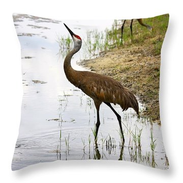 Dip In The Pond Throw Pillow by Carol Groenen