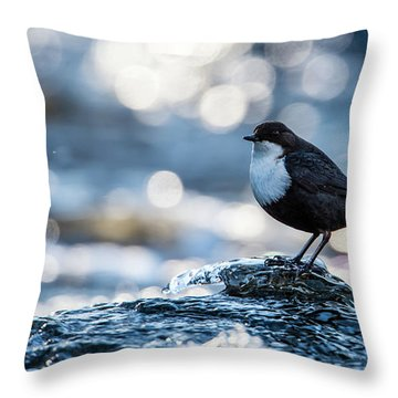 Dipper On Ice Throw Pillow by Torbjorn Swenelius