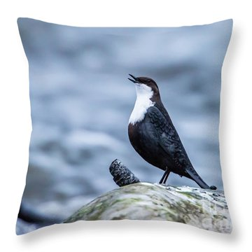Throw Pillow featuring the photograph Dipper's Call by Torbjorn Swenelius