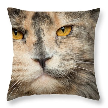 Direct Look Throw Pillow