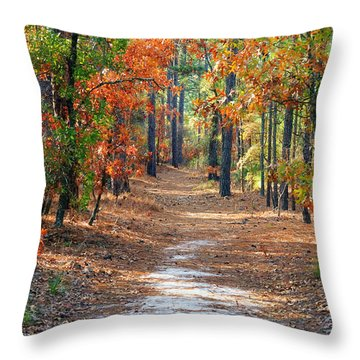 Autumn Scene Dirt Road Throw Pillow