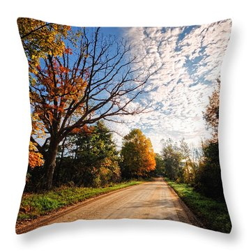 Throw Pillow featuring the photograph Dirt Road And Sky In Fall by Lars Lentz