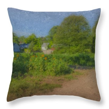 Dirt Road At Langwater Farm Throw Pillow