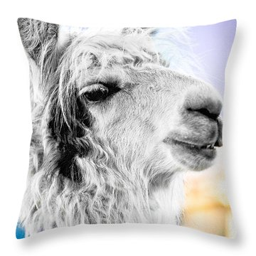 Dirtbag Llama Throw Pillow by TC Morgan