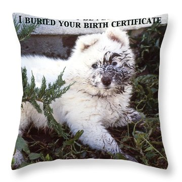 Dirty Dog Birthday Card Throw Pillow