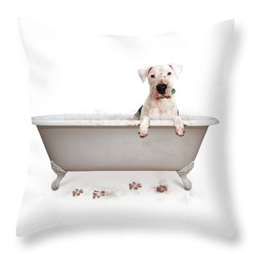 Dirty Muddy Bad Dog Throw Pillow