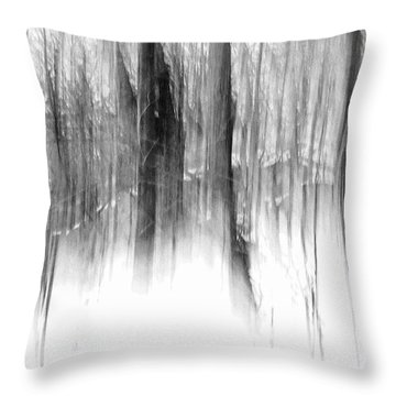 Throw Pillow featuring the photograph Disappearance by Steven Huszar