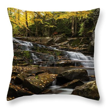 Discovery Falls Autumn Throw Pillow