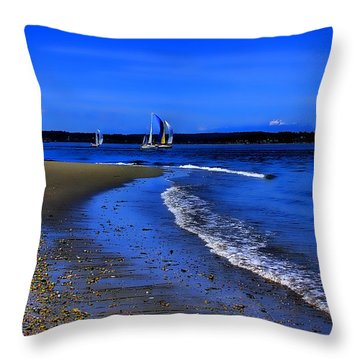Discovery Park North Beach Throw Pillow by David Patterson