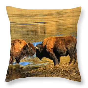 Throw Pillow featuring the photograph Discussing The Crossing by Adam Jewell