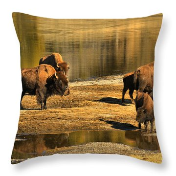 Throw Pillow featuring the photograph Discussing The River Crossing by Adam Jewell