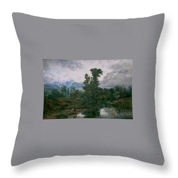 Niebla Throw Pillows