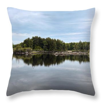 Dismal Bay - Otis Reservoir - The Berkshires Throw Pillow