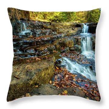 Dismal Creek Falls Horizontal Throw Pillow