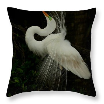 Displaying In The Shadows Throw Pillow by Myrna Bradshaw