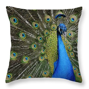 Throw Pillow featuring the photograph Displaying Peacock Portrait by Bradford Martin
