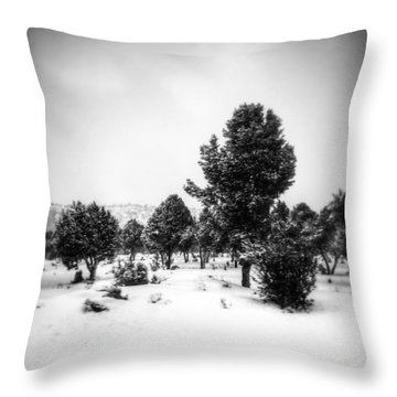 Throw Pillow featuring the photograph Distant by Mark Ross