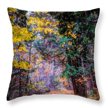 Distant Path Throw Pillow