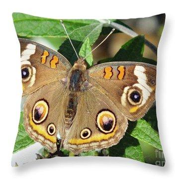 Distinctive Markings - Common Buckeye Throw Pillow