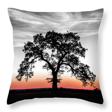 Throw Pillow featuring the photograph Distinctly by Betty LaRue