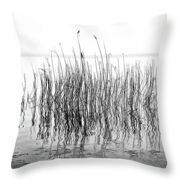 Distortion  Throw Pillow