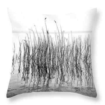 Distortion  Throw Pillow by Karen Stahlros